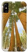 Giant Sequoias And First Snow IPhone Case by Yva Momatiuk John Eastcott