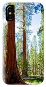 Giant Sequoias In Mariposa Grove In Yosemite National Park-california IPhone Case