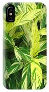 Ginger Lily. Alpinia Zerumbet IPhone Case