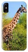 Giraffe Among Trees. Safari In Serengeti. Tanzania IPhone Case
