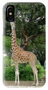 Giraffe Eats-09053 IPhone Case