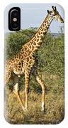 Giraffe From Tanzania IPhone Case