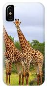 Giraffe Males Before The Storm IPhone Case