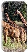 Giraffes Galore IPhone Case