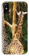 Giraffes In Love IPhone Case