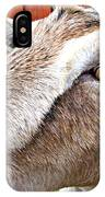 Give Us A Kiss IPhone Case