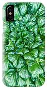 Glabrous Leaves IPhone Case