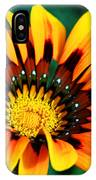 Glorious Day Yellow Flower By Diana Sainz IPhone Case