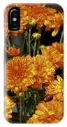 Glorious Golden Mums IPhone Case
