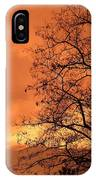 Glorious Silhouettes 1 IPhone Case