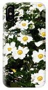 Glorious White Roses Db IPhone Case