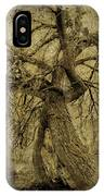 Gnarled And Twisted Tree With Crow IPhone Case