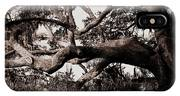 Gnarly Limbs At The Ashley River In Charleston IPhone Case