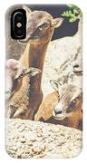 Goats On A Rock IPhone Case