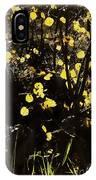 Gold Coin Aspen IPhone Case