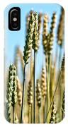 Gold Harvest Blue Sky IPhone Case