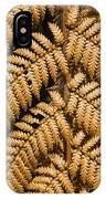 Gold Leaf Fern IPhone Case