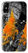 Golden Accentuation IPhone Case