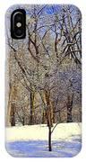 Golden Central Park IPhone Case