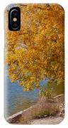 Golden Cottonwoods IPhone Case