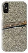 Golden Damselfly - Odonata - Suborder Zygoptera IPhone Case