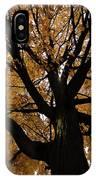 Golden Fall IPhone X Case