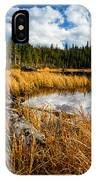 Golden Grass At Red Rocks Lake IPhone Case