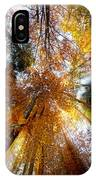 Golden Rays IPhone Case