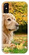 Golden Retriever Dog Autumn Day IPhone Case