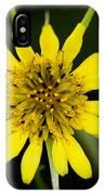 Golden Star Flower Yellow Salsify Glacier National Park IPhone Case