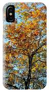 Golden Tree Lined Sky IPhone Case