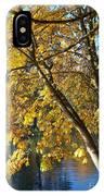Golden Zen IPhone Case
