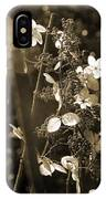 Goldenrod In Sepia IPhone Case