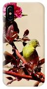Goldfinch In Tree 031015a IPhone Case