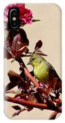 Goldfinch In Tree 031015aa IPhone Case