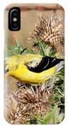 Goldfinch Quest 3 IPhone Case