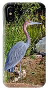 Goliath Heron By Water IPhone Case