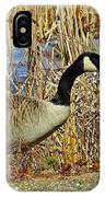 Goose On The Edge IPhone Case