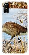 Goose Walking IPhone Case