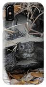 Gopher Tortoise IPhone Case