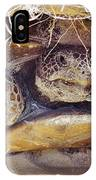 Gopher Tortoise IPhone Case