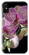 Gorgeous Orchids IPhone Case