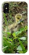 Gosling Chewing On Some Grass IPhone Case