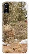 Gould's Wild Turkey Vii IPhone Case