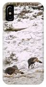 Gould's Wild Turkey Viii IPhone Case