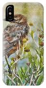 Grackle In Flowers IPhone Case