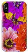 Grandma's Zinnias IPhone Case