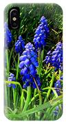 Grape Hyacinths 2014 IPhone Case