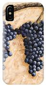 Grape Vine IPhone Case