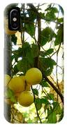 Grapefruits IPhone Case